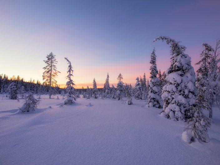 Зимняя сказка Северной Карелии 2021